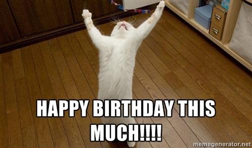 great-birthday-cat-cat-happy-birthday-video-happy-birthday-imges.jpg