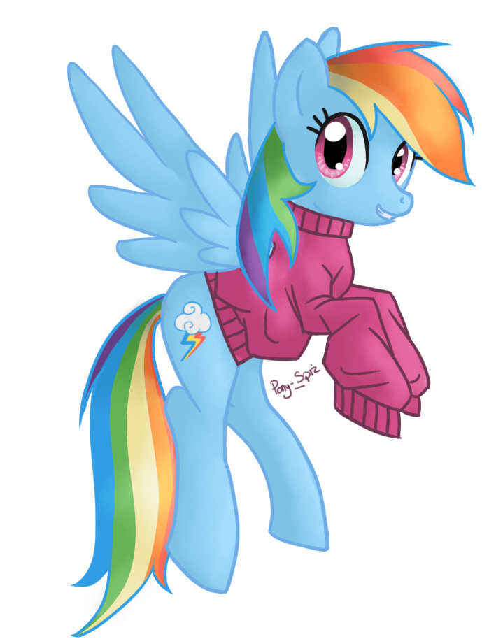 rainbow_dash_by_pony_spiz-d495i4i.png