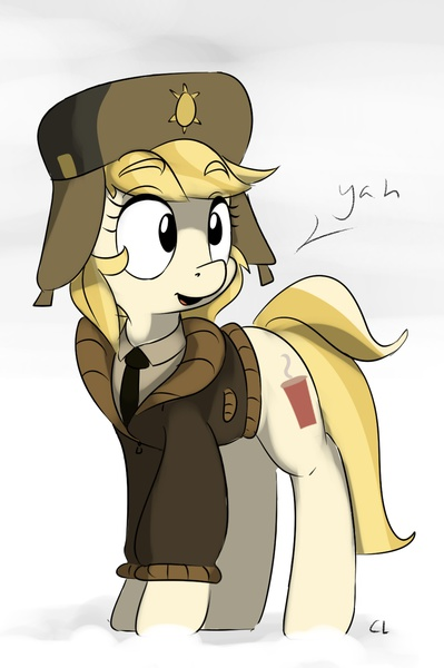 Fargo Reference And Mlp Adorable Accent Tabby Doing The Voice Whatever The Final Name Of The Whinnyappolis Delegate Will Be She Is A Mare That Deserves