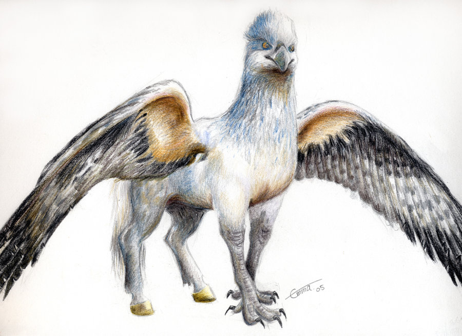 hippogriff_by_emma143.jpg