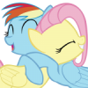 --Rainbow-Dash--